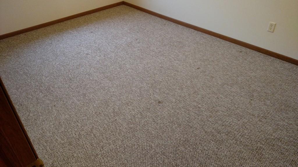 After picture in carpet cleaning project.